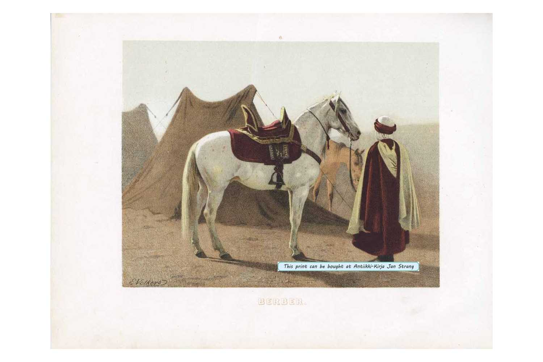 VOLKERS, E. Berber
