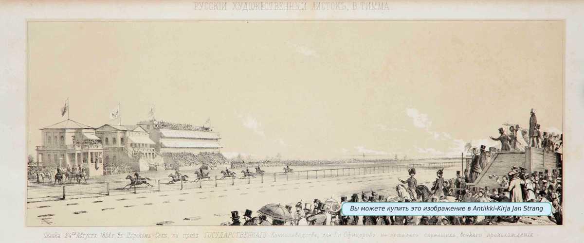 TIMM, V. Laukkakilpailut 24.8.1852 Tsarskoje Selossa